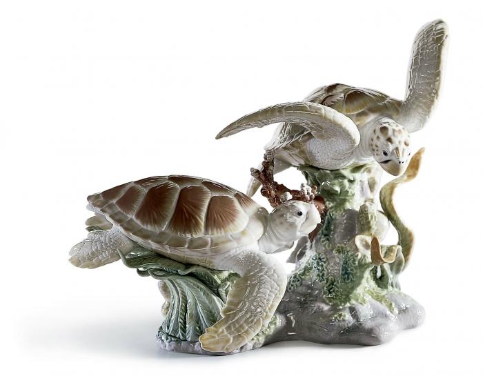 tortugas carey figura