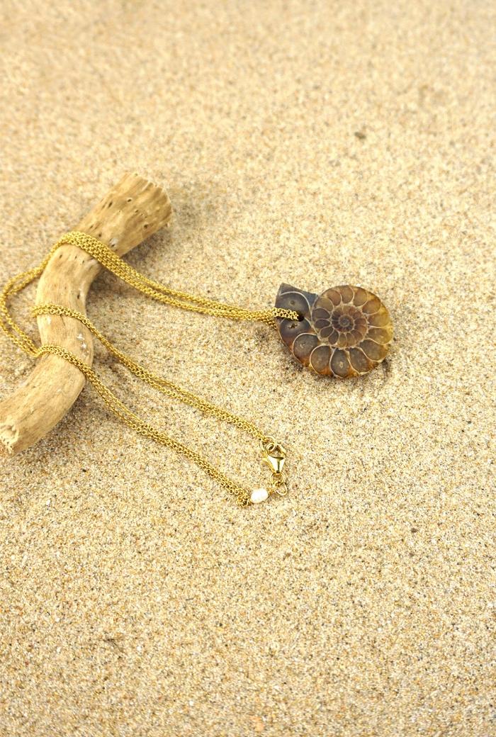 collar fósil ammonites